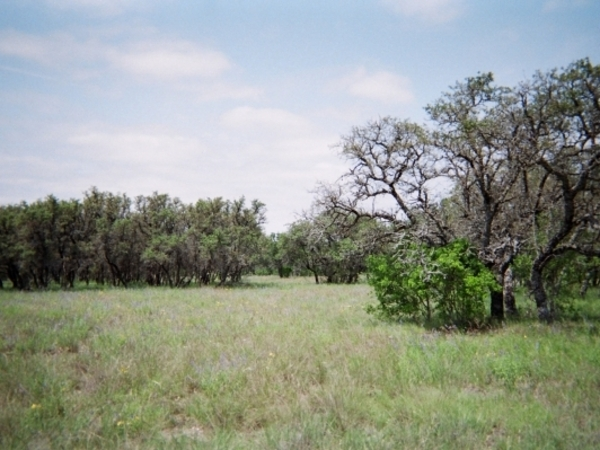 356ac Kimble County Photo
