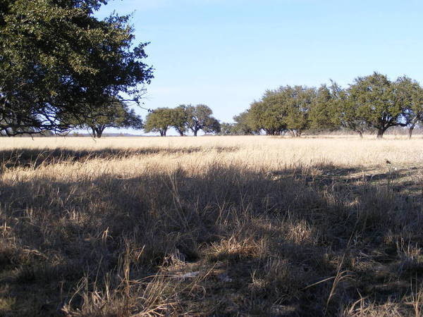 Hawkeye Ranch Photo