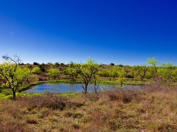 Mesquite Hills Ranch - REDUCED Photo Thumbnail